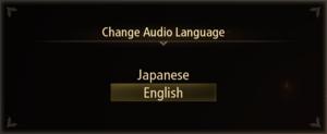 Audio language settings