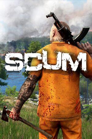 Scum cover
