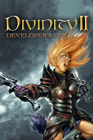 Divinity II: Developer's Cut cover