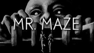 Mr. Maze cover