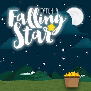 Catch a Falling Star cover