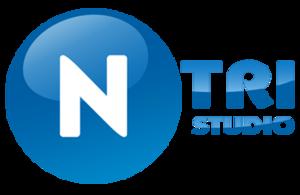 Company - N-Tri Studio.png