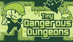 Tiny Dangerous Dungeons cover