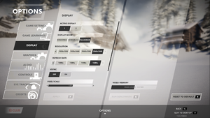 In-game main display settings.