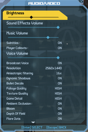 In-game video/audio settings.