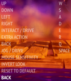 In-game keyboard and mouse settings.