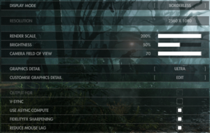 In-game display settings