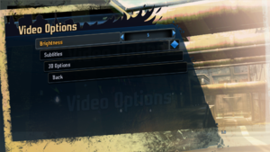 In-game video options.