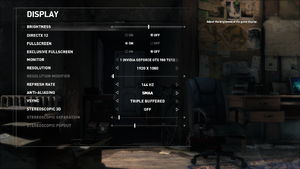 In-game display settings (Steam version).