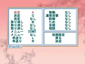 Controller input options menu
