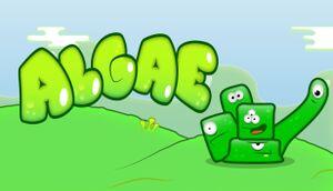 Algae cover