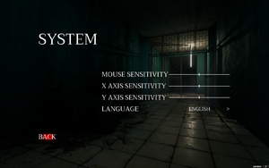 In-game system settings