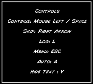 In-game controls.