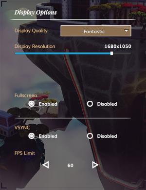 In-game display settings.
