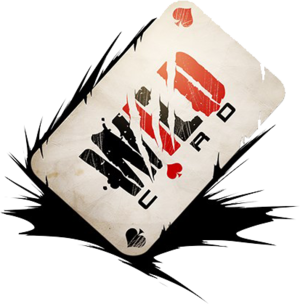 Company - Studio Wildcard.png
