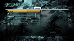 In-game audio settings (for multiplayer).