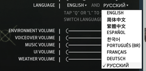 In-game language settings.