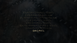 In-game detail settings.