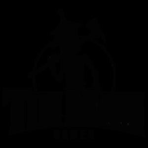 Company - Tin Man Games.png