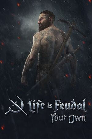 Life is Feudal: Your Own cover