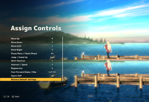 In-game keyboard remapping settings.