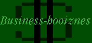 Business Hooiznes cover