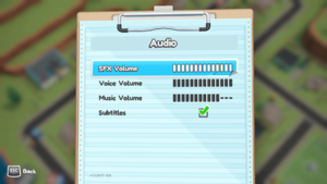 Audio Setting