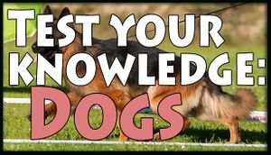 Test your knowledge: Dogs cover