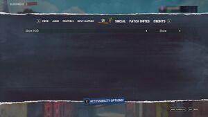 In-game UI settings.
