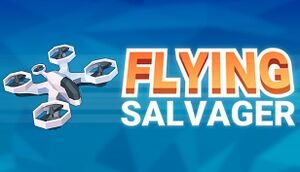 Flying Salvager cover