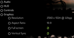 General in-game settings for Linux.