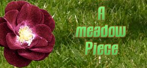 A Meadow Piece cover