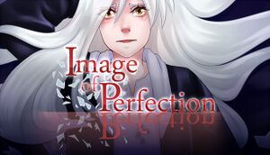 Image of Perfection cover