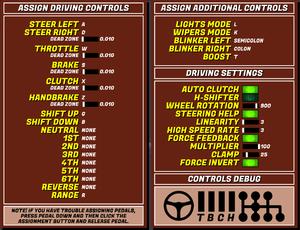 In-game input (car) settings.