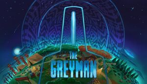 The Grey Man cover