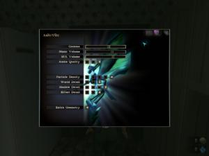 In-game audio/video settings
