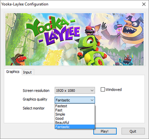 Unity launcher, accessed by pressing ⇧ Shift when launching the game. Input tab is using placeholders only.