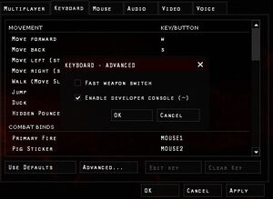 Advanced Keyboard Settings, use this to enable the console.