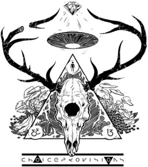 Choice Provisions logo.png