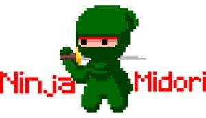 Ninja Midori cover