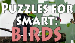 Puzzles for smart: Birds cover