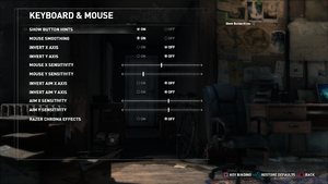 In-game input settings (Steam version).