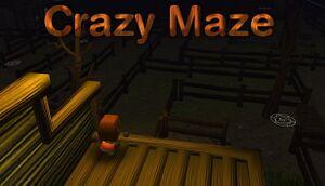 Crazy maze ~疯狂迷宫 ~ 狂った迷路 ~ Laberinto loco ~ Labyrinthe fou ~ Verrücktes Labyrinth cover