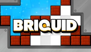 Briquid cover